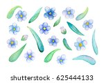 watercolor flowers and leaves... | Shutterstock . vector #625444133