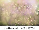 a colorful blurry grass flowers. | Shutterstock . vector #625841963