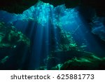 beautiful underwater world of... | Shutterstock . vector #625881773