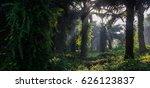 an oil palm plantation lets... | Shutterstock . vector #626123837