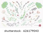 colorful hand drawn herbs ... | Shutterstock .eps vector #626179043