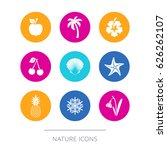 simple modern nature icons... | Shutterstock .eps vector #626262107