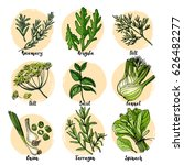 herbs. spices. italian herb... | Shutterstock .eps vector #626482277