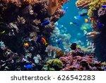 underwater background.... | Shutterstock . vector #626542283