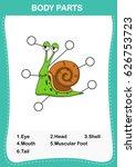 illustration of snail...   Shutterstock .eps vector #626753723