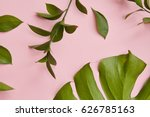 green twigs isolated | Shutterstock . vector #626785163