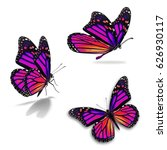 beautiful three monarch... | Shutterstock . vector #626930117