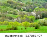 spring scenery of bushes and... | Shutterstock . vector #627051407