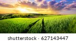 vast green field at gorgeous... | Shutterstock . vector #627143447