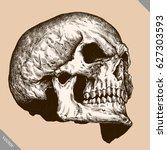 engrave isolated human skull... | Shutterstock .eps vector #627303593