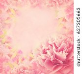 Stock photo delicate peony frame blooming flowers festive background pastel and soft card selective focus 627305663