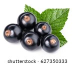 black currant branch isolated... | Shutterstock . vector #627350333