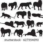 african lion and asian lion... | Shutterstock .eps vector #627554093
