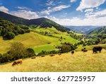 scenic summer landscape  green...   Shutterstock . vector #627725957