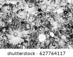 abstract blurred motion blure...   Shutterstock . vector #627764117
