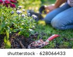woman gardening on a sunny... | Shutterstock . vector #628066433