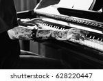 Small photo of Pianist Practicing on a Grand Piano with classical music
