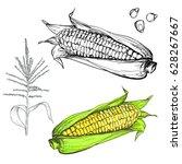 hand drawn illustration set of... | Shutterstock . vector #628267667
