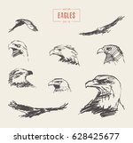 Collection Of Realistic Eagles...