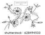 morning glory flowers drawing... | Shutterstock .eps vector #628494533