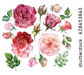 watercolor set of red roses | Shutterstock . vector #628653863