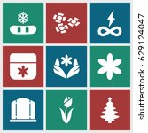 ornament icons set. set of 9... | Shutterstock .eps vector #629124047