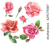 Stock photo set of elements roses greeting card watercolor 629175587