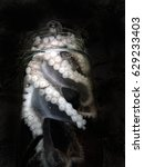 Small photo of Octopus, alive in a glass jar