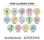 hand drawn food safety allergy... | Shutterstock .eps vector #629291963