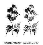 black and white monochrome... | Shutterstock . vector #629317847
