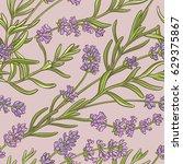 Lavender Vector  Pattern