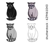 raccoon is a forest animal. a...   Shutterstock .eps vector #629461043