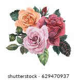hand painted watercolor... | Shutterstock . vector #629470937