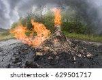 ukraine  prykarpattya   in the... | Shutterstock . vector #629501717