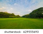 meadow in the green park... | Shutterstock . vector #629555693
