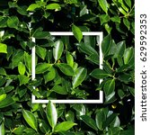 square frame  creative layout... | Shutterstock . vector #629592353