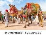 bikaner  india  14th january... | Shutterstock . vector #629604113