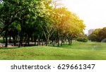 green park in city at sunset ... | Shutterstock . vector #629661347