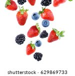 berries falling. | Shutterstock . vector #629869733