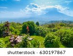 view of mount sabyinyo  one of... | Shutterstock . vector #630197867