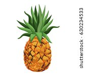 pineapple fruit tropical food... | Shutterstock .eps vector #630234533