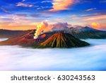 mount bromo volcano  gunung...   Shutterstock . vector #630243563