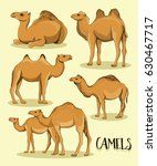 camel silhouettes set | Shutterstock .eps vector #630467717