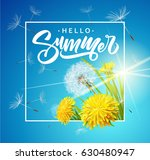 inscription summer on... | Shutterstock .eps vector #630480947