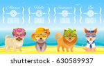 travel summer fashion puppy dog ... | Shutterstock .eps vector #630589937