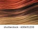 colorful hair texture hair care ... | Shutterstock . vector #630651233