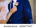 close up bride's hands pinning... | Shutterstock . vector #630677567