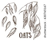 drawing of oat sketch set on... | Shutterstock .eps vector #630765167