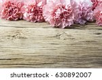 pink carnation flowers on old... | Shutterstock . vector #630892007