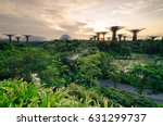 garden by the bay  singapore ... | Shutterstock . vector #631299737